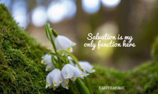 salvationismyinlyfunction
