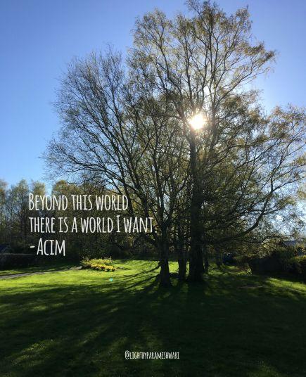 beyondthisworld