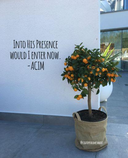 intohispresence